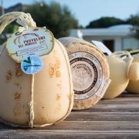 Villa Fattorusso formaggi di qualità in degustazione a Posillipo