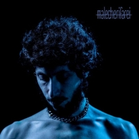 Malecherifarei il primo album del cantautore Michele Maccaferri
