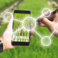 """""""Macchinari Innovativi"""", il nuovo bando per la digitalizzazione dell'agroalimentare"""