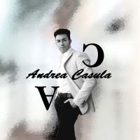 È online il nuovo sito internet dell'artista torinese Andrea Casula