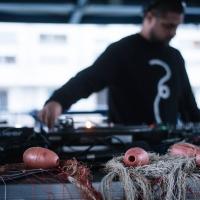 Musica elettronica e frittura di pesce: Fish & Djs inaugura il 2020 di Electropark