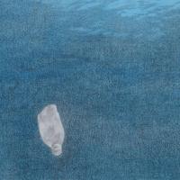 MICROSFERA PE -  Piccolo racconto di coscienza ambientale