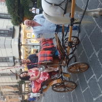 In giro per Sorrento, cantando in carrozza