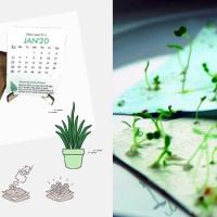 Il calendario non si butta, si pianta!