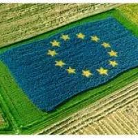 Agroalimentare: dal Recovery Fund una spinta al rinnovamento