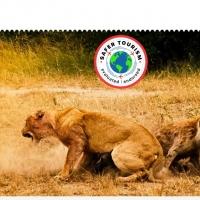 Per andare alla scoperta del Kenya scegliamo Award Tours and Safaris