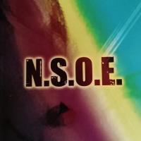 """""""N. S. O. E."""", il nuovo romanzo di Vansky"""