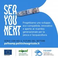 Pesca e acquacoltura sostenibili, il contributo del PO FEAMP 2014 - 2020