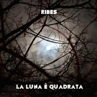 Ribes, La luna è quadrata