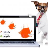 Dropshipping automatizzato: la nuova soluzione all-in-one per il tuo Store Shopify