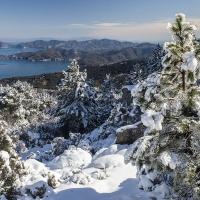 Inverno a Capo Sant'Andrea: il Raro Incontro tra Costa e Picchi Innevati