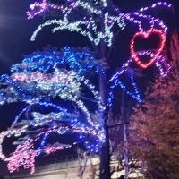 Installazioni natalizie dedicate al grande Cuore della Comunità padovana!