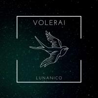 Lunanico, il singolo d'esordio è