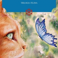 Esce oggi il romanzo dello scrittore sanremese Dario Daniele 'La costellazione del Gatto'