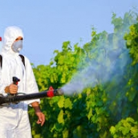 Disinfestazione e Sanificazione Toscana