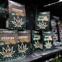 I furbetti della cannabis light