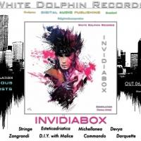 Fuori il 6 gennaio, la nuova compilation della White Dolphin Records :