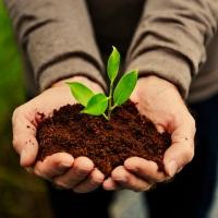 Come produrre compost in maniera facile con il Biotrituratore