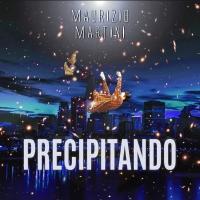 Maurizio Martini - PRECIPITANDO