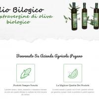 I benefici dell'olio extravergine di oliva biologico siciliano