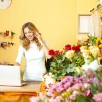 Le gerbere: caratteristiche e come prendersene cura