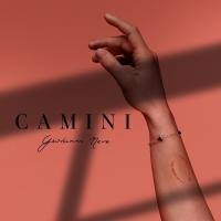 Camini è il singolo d'esordio di Giovanni Neve in uscita il 5 Febbraio