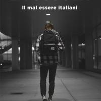 Dario Balzaretti, La scuola. Il mal essere italiani.