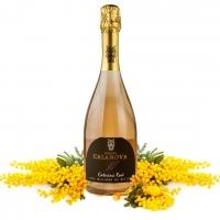 Colore rosa corallo, sentore di petali di rosa: per la Festa della Donna ecco le bollicine del Caterina Rosè di Podere Casanova di Montepulciano