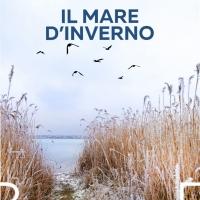 """""""Il mare d'inverno"""", il nuovo libro dell'autore veronese Michele Antonelli"""