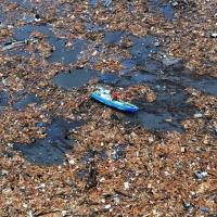 L'isola di plastica più grande del mondo