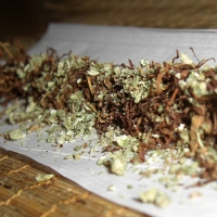 Negli USA i teenager fumano più marijuana che sigarette