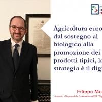 Agricoltura Europea: dal sostegno al biologico alla promozione dei prodotti tipici, la strategia è il digitale