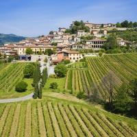 Tendenza estate 2021: vacanze in campagna - Raffinata ospitalità fra le vigne della Franciacorta, al Wine Resort Corte Lantieri di Capriolo