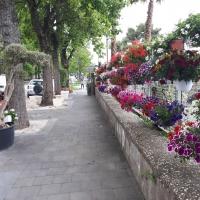 Via Petrarca il giardino di Napoli
