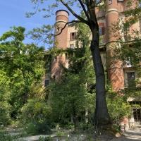 La Rete degli orti botanici della Lombardia celebra le Giornate mondiali dei musei e della biodiversità