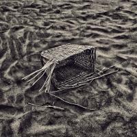Alessandro Bassani lancia il suo nuovo sito web ed espone durante il Festival Europeo della Fotografia