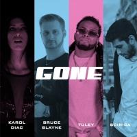 Karol Diac, Bruce Blayne, Tuley, Scirica – Gone