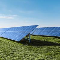 Il fotovoltaico dà buoni frutti: la perfetta sintonia tra coltivazione di frutti di bosco e produzione di energia fotovoltaica