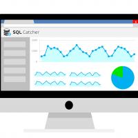 I controlli di SQL Catcher per SQL Server: avvisi e notifiche importanti