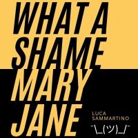 What a shame Mary Jane: online il nuovo singolo pop punk di Luca Sammartino