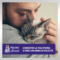 Feliway, 25 anni di feromoni per la serenità dei gatti