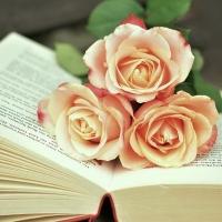 Libri di viaggio, l'imperdibile fonte del piacere e del conoscere