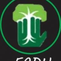 FADU FOUNDATION & FONDAZIONE CAMPANELLI ONLUS UNITE PER IL BAMBU' GIGANTE