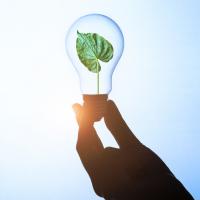 Ecobonus 50% - 65%: cos'è e come funziona