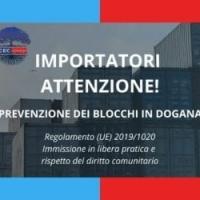 Regolamento (UE) 2019/1020 sull'importazione