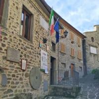 """""""Raggiolo a cappello"""", l'arte di strada invade i vicoli del borgo casentinese"""