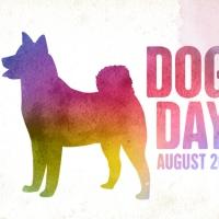 Giornata Internazionale del cane. Un amico di fiducia per cui vivere bene ed in maniera sana.