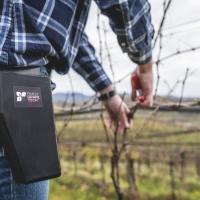 La viticoltura risparmia milioni di euro grazie ai prodotti Finest Grape Tech.