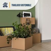 Traslocare in modo sostenibile ed ecologico: una necessità e un dovere.