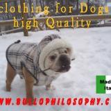 Anteprima A/I 2010-2011 abbigliamento alta qualità per cani: www.bullophilosophy.com
